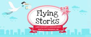 flyingstorksheaderreduced