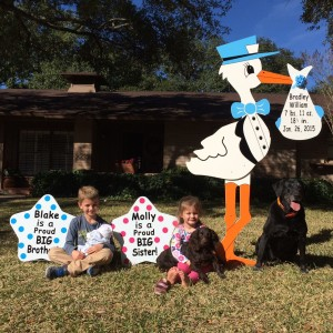 Frederick Maryland Stork Sign Rental<br/>Flying Storks Lawn Signs Stork Announcements in Maryland<br/> 301-606-3091