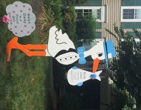 Stork Sign Birth Announcement<br/> Brunswick, MD,br/> Flying Storks<br/> (301) 606-3091