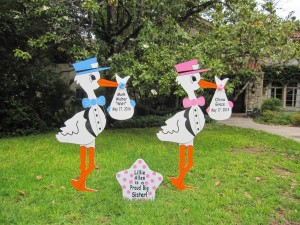 Twin Stork Lawn Sign Birth Announcements<br />  Flying Storks<br />  Brunswick, MD<br />  (301)301-606-3091