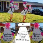 Hagerstwon, MD Stork Sign Rental<br/> Flying Storks<br/> (301) 606-3091