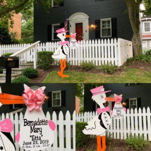 Pink Flying Stork Yard Sign Rental