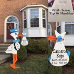 Silver Spring, MD Stork Sign Rental Birth Announcement Yard Card Flying Storks in Maryland