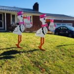 Hagerstown Twin Pink Yard Stork Signs Flying Storks (301) 606-3091