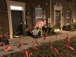 Flamingo Yard Signs in Maryland and Northern Virginia