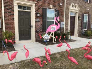 flamingo Flock Yard Signs