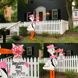 Pink Flying Stork Yard Sign Rental