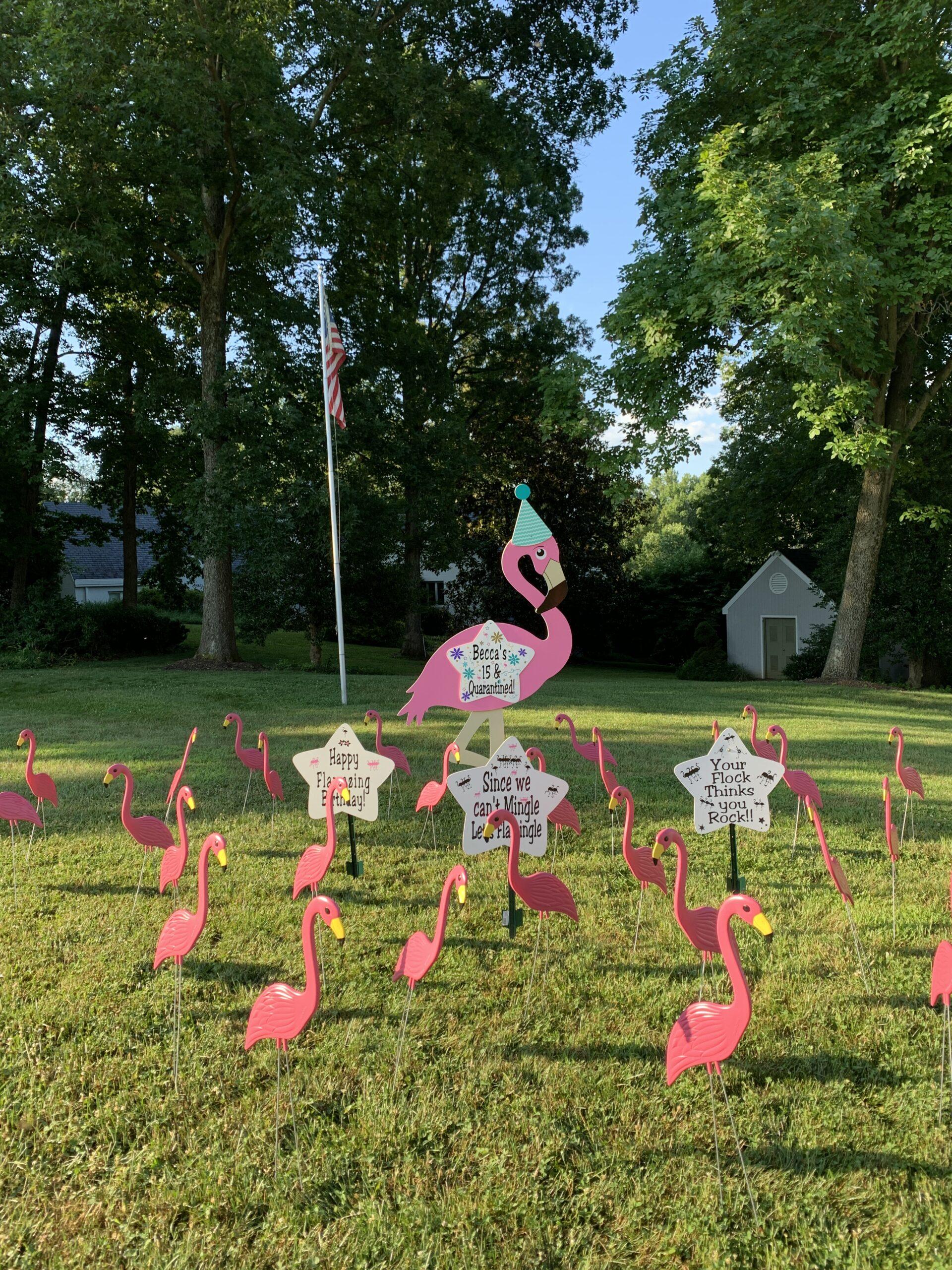 Frederick, Maryland Stork Signs~Flying Storks~MD Yard Stork Signs